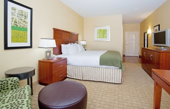 Room Holiday Inn Express & Suites DENVER AIRPORT