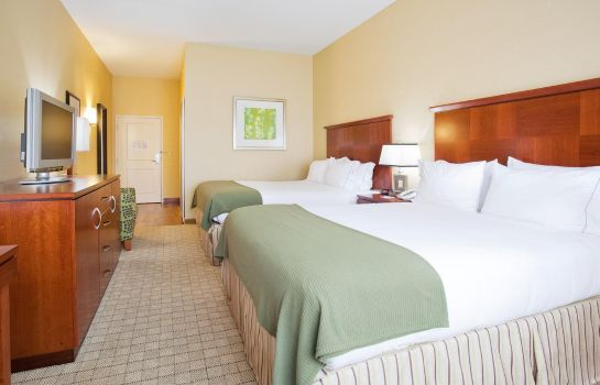 Kamers Holiday Inn Express & Suites DENVER AIRPORT