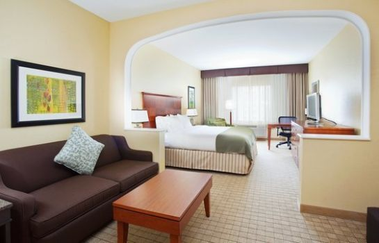 Chambre Holiday Inn Express & Suites DENVER AIRPORT