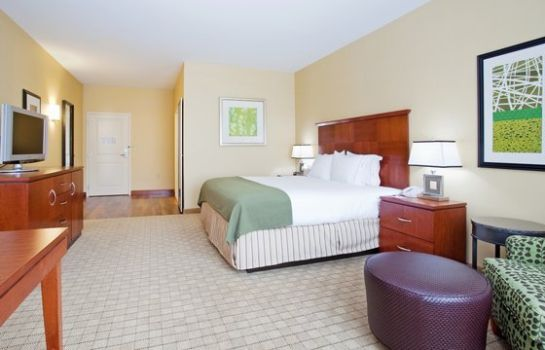 Camera Holiday Inn Express & Suites DENVER AIRPORT