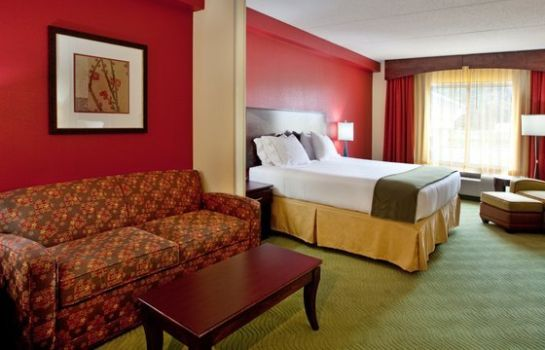 Suite Holiday Inn Express & Suites SPARTANBURG-NORTH