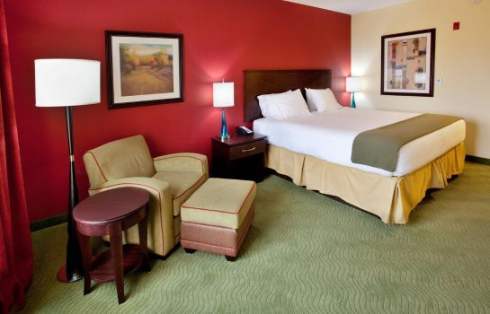 Habitación Holiday Inn Express & Suites SPARTANBURG-NORTH