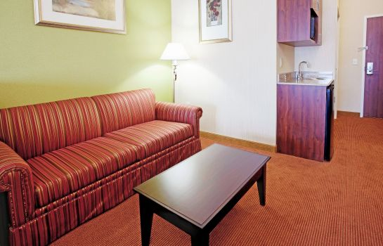 Suite Holiday Inn Express & Suites MINDEN