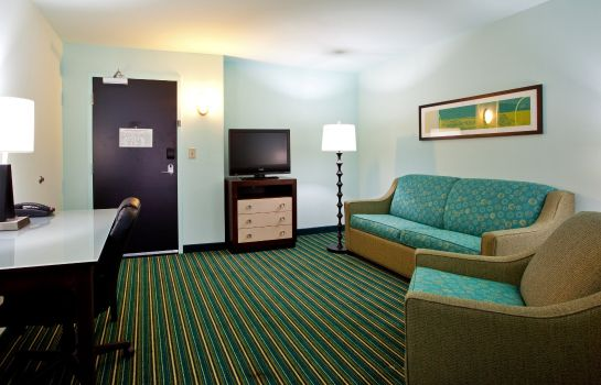 Suite Holiday Inn Express & Suites NORFOLK AIRPORT