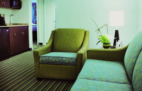 Zimmer Holiday Inn Express & Suites NORFOLK AIRPORT