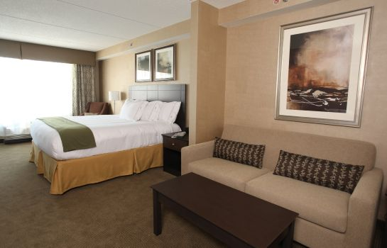 Suite Holiday Inn Express & Suites KINGSTON