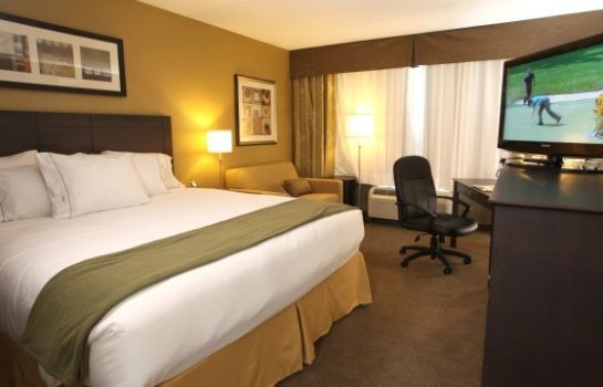 Zimmer Holiday Inn Express & Suites KINGSTON
