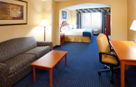 Suite Holiday Inn Express SYRACUSE AIRPORT