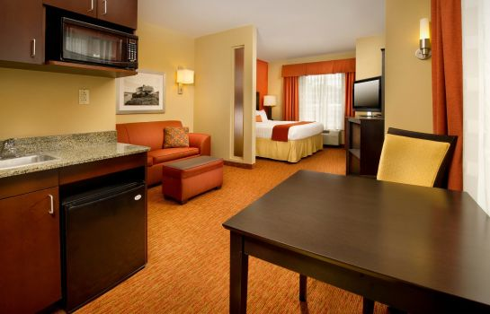 Suite Holiday Inn Express & Suites CHATTANOOGA DOWNTOWN