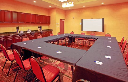 Conference room Holiday Inn Express & Suites CHATTANOOGA DOWNTOWN