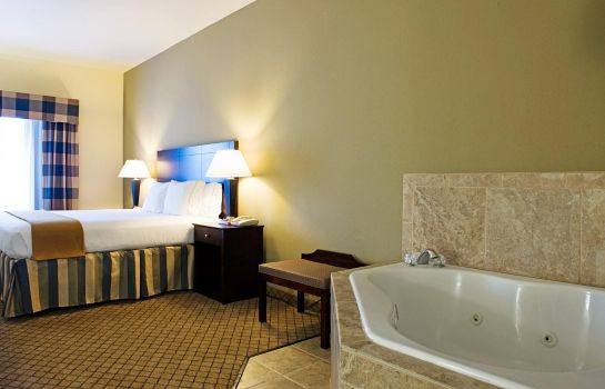 Suite Holiday Inn Express & Suites SAN ANTONIO NW-MEDICAL AREA