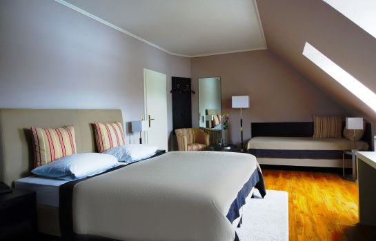 Double room (superior) Alcedo Sporthotel