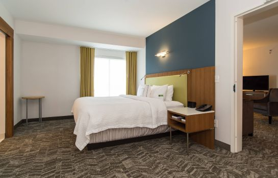 Suite SpringHill Suites Charlotte Ballantyne