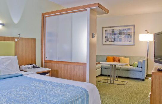 Zimmer SpringHill Suites Charlotte Ballantyne Area
