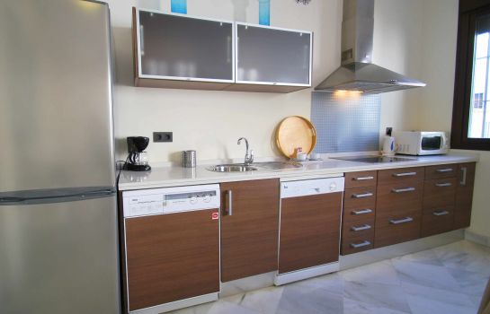 Kitchen in room Living Sevilla San Lorenzo Apartments