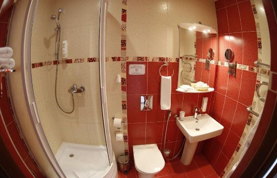 Bathroom Nikol Business Hotel