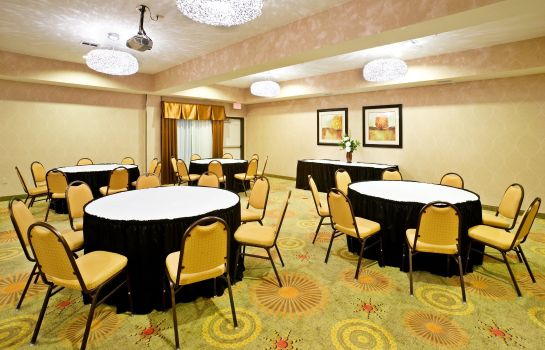 Sala konferencyjna Holiday Inn Express & Suites DALLAS EAST - FAIR PARK
