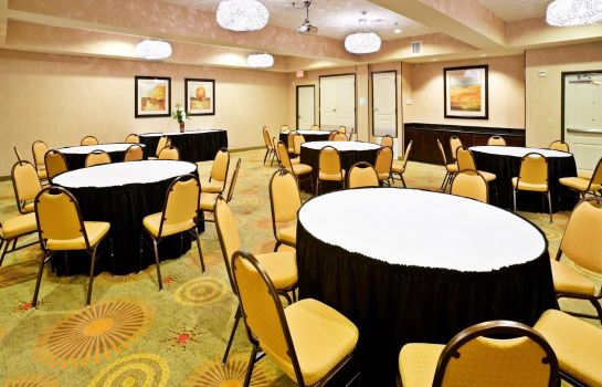 Congresruimte Holiday Inn Express & Suites DALLAS EAST - FAIR PARK