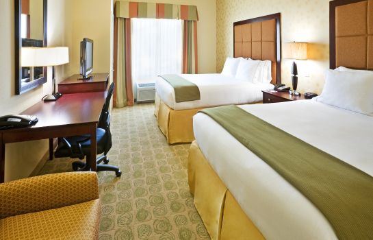 Kamers Holiday Inn Express & Suites DALLAS EAST - FAIR PARK