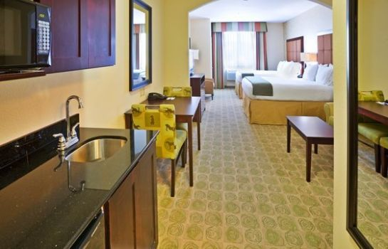 Zimmer Holiday Inn Express & Suites DALLAS EAST - FAIR PARK