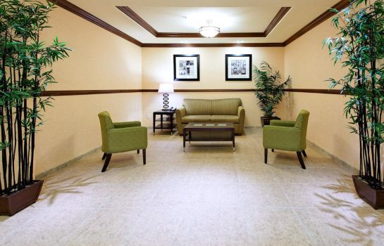 Hotelhalle Holiday Inn Express & Suites FRESNO NORTHWEST-HERNDON