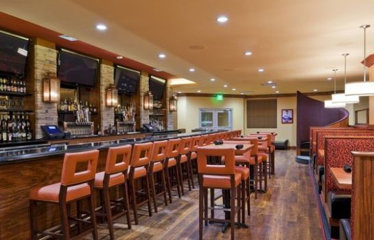 Hotel-Bar Holiday Inn SAN ANTONIO NW - SEAWORLD AREA