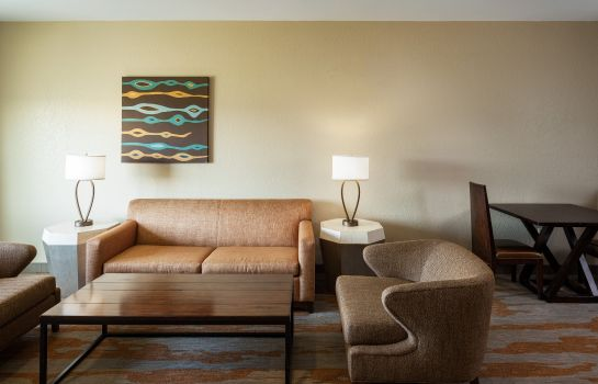 Suite Holiday Inn SAN ANTONIO NW - SEAWORLD AREA