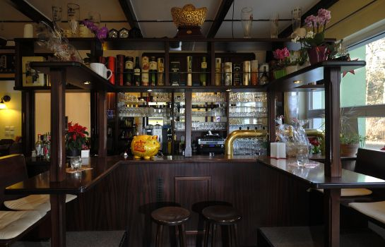 Hotel bar HONG XING Waldrestaurant & Hotel