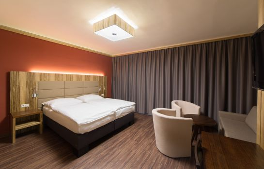Double room (standard) Hotel-Restaurant Schweinberger