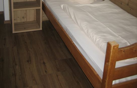 Single room (standard) Jagdhof Kramsach