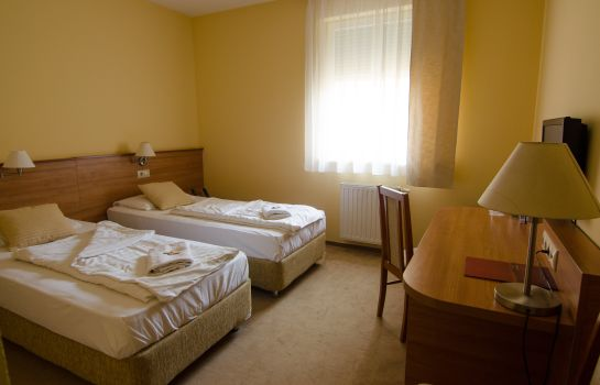 Double room (standard) Boutique Hotel Civitas***