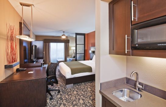 Suite Holiday Inn Express & Suites NORTH DALLAS AT PRESTON