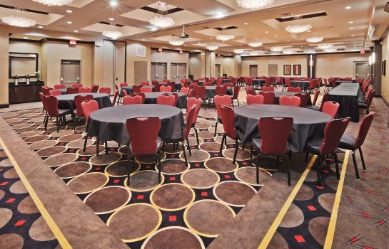 Conference room Holiday Inn Express & Suites NORTH DALLAS AT PRESTON