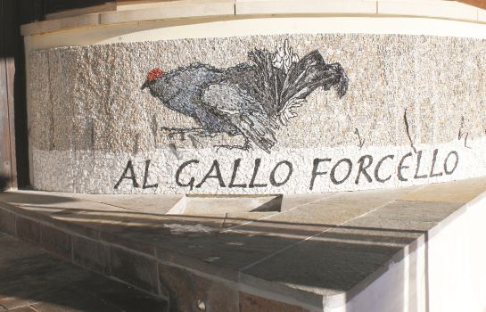 Info Al Gallo Forcello 1530 ***  Superior