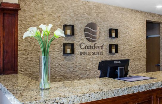 Hol hotelowy Comfort Inn and Suites Durango