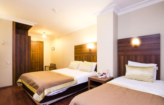 Double room (standard) Grand Gebze Hotel