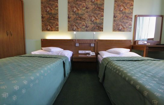 Double room (superior) Hotel Max Inn
