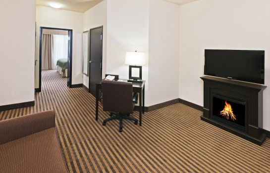 Suite Holiday Inn Express & Suites OKLAHOMA CITY NW-QUAIL SPRINGS