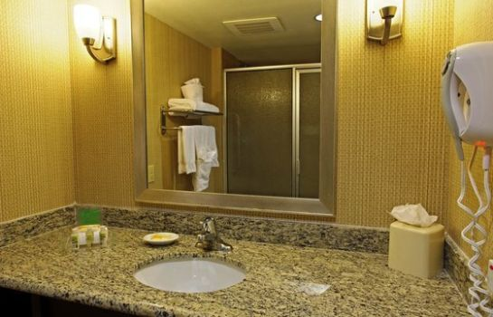 Zimmer Holiday Inn & Suites PHOENIX AIRPORT