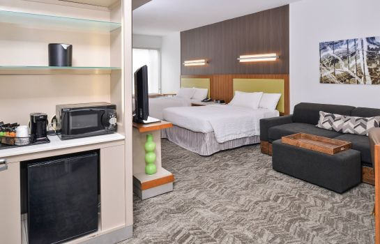 Suite SpringHill Suites Ashburn Dulles North SpringHill Suites Ashburn Dulles North