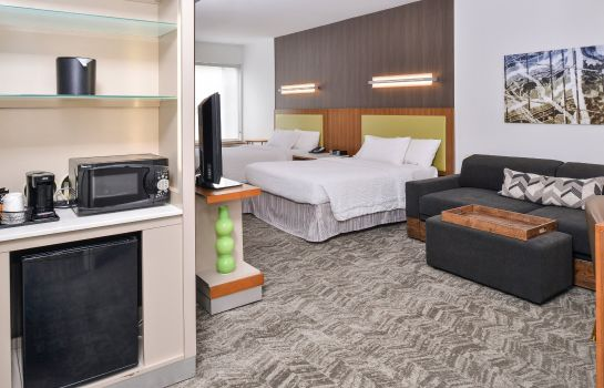 Zimmer SpringHill Suites Ashburn Dulles North