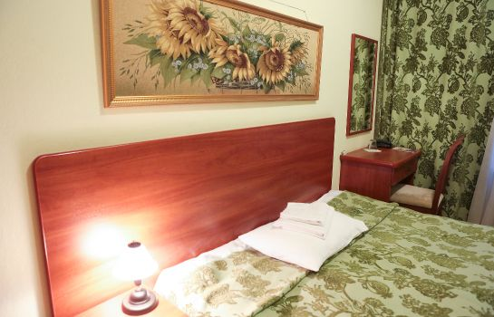 Chambre double (confort) Baskof Mini Hotel