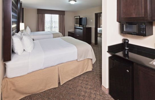 Zimmer Holiday Inn Hotel & Suites TULSA SOUTH