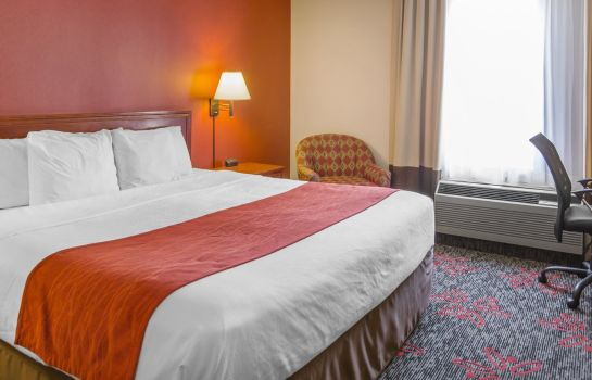 Kamers Comfort Inn & Suites University