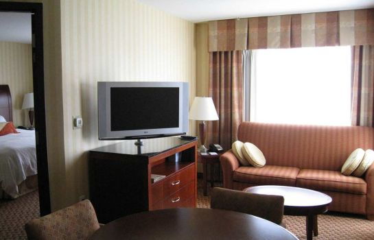 Zimmer Hilton Garden Inn Albany Medical Center