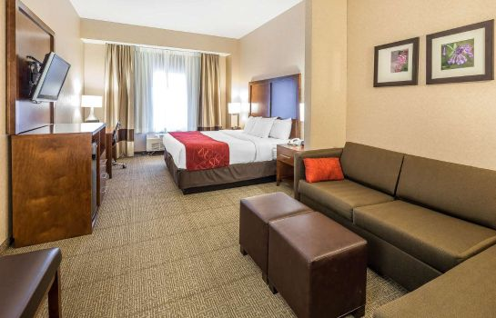 Suite Comfort Suites Anchorage International A