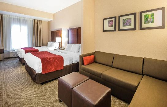 Zimmer Comfort Suites Anchorage International A