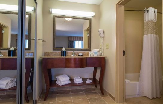 Suite Hampton Inn - Suites Atlanta Arpt West-Camp Creek Pkwy GA
