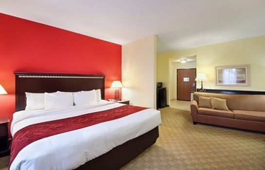 Suite Holiday Inn BROWNSVILLE