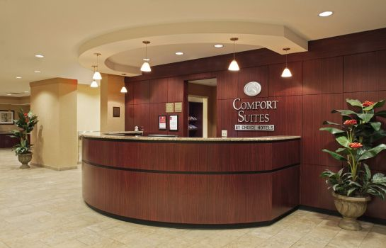 Hall de l'hôtel Comfort Suites Cicero - Syracuse North